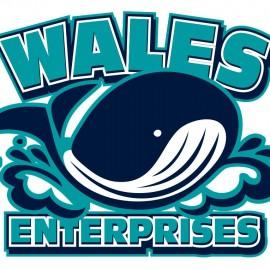 Wales Enterprises