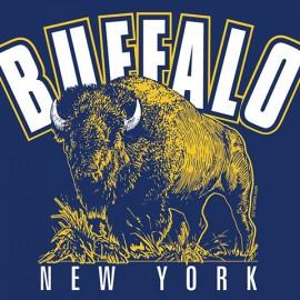 Buffalo New York Logo Design & T-Shirt Screen Imprint