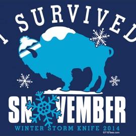 I Survived Snowvember Buffalo New York Logo Design & T-Shirt